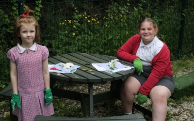 Dissecting a Lily with Gardening Club